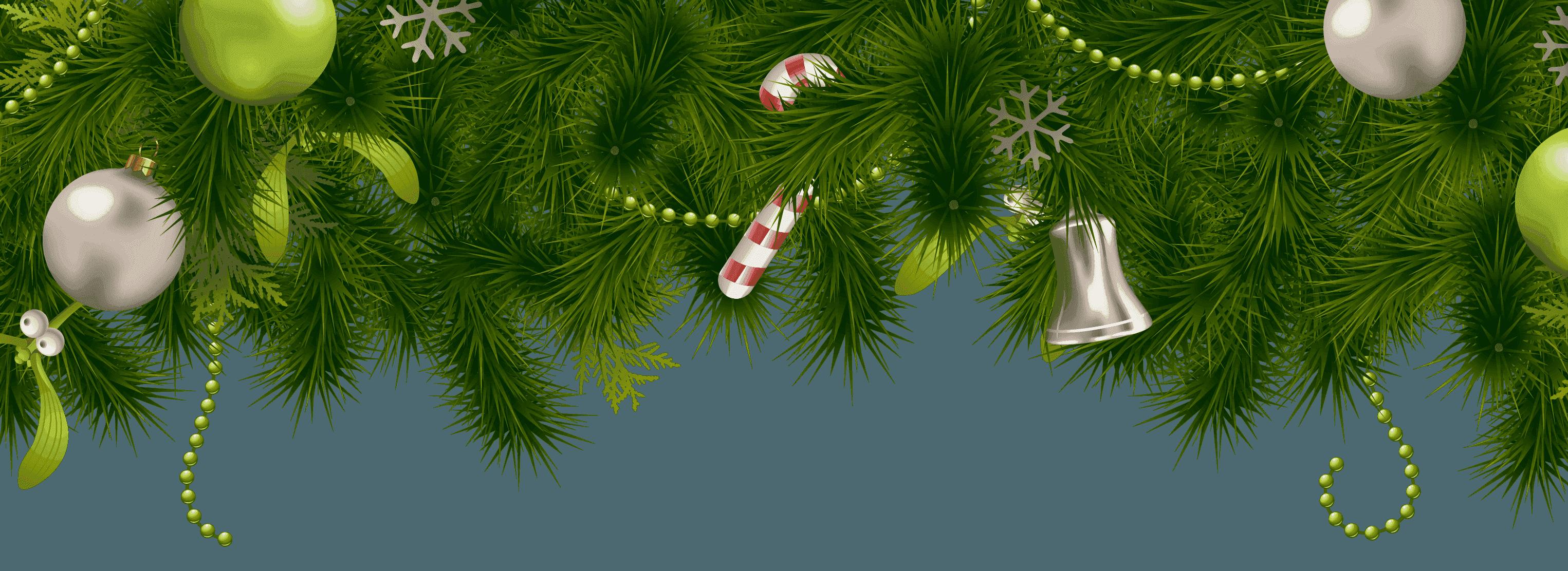 сети моментально картинки веточки ели новогодние без фона это